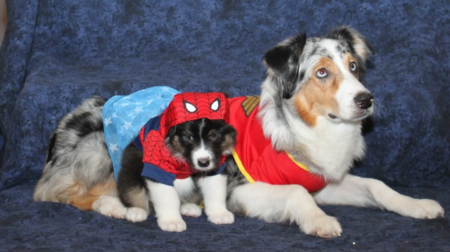 superherogravy