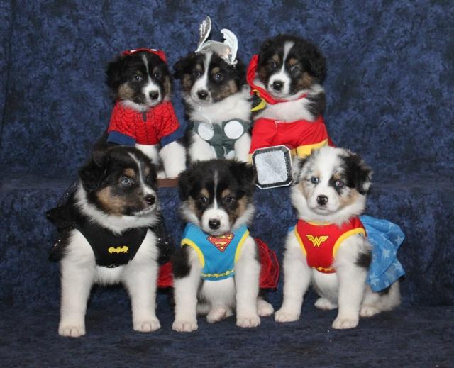 superherosgroup